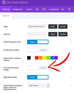 DIVI Grab First Post Image - Remove Featured Image- Hide Featured image in DIVI and EXTRA themes