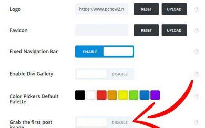 DIVI Remove Featured Image | Extra Remove Featured Image